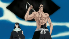 Byakuya Kuchiki (left) Kenpachi Zaraki (right)